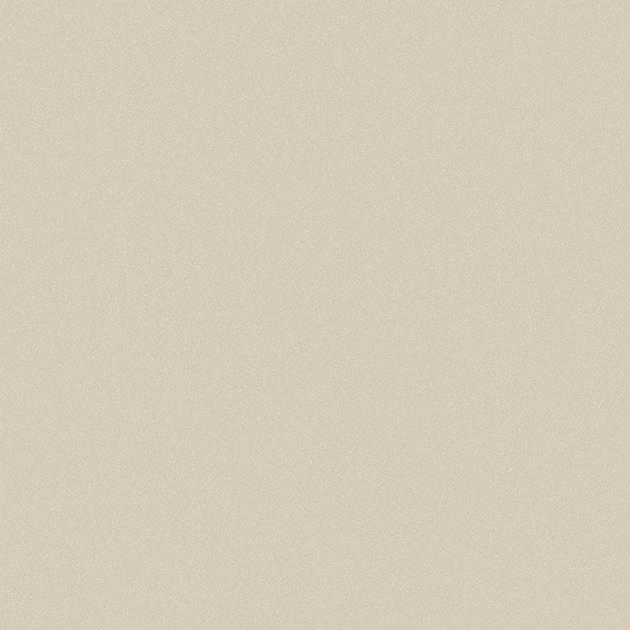 GẠCH VIGLACERA TS5 601 MANG ĐẾN KHÔNG GIAN TUYỆT VỜI CHO NGÔI NHÀ BẠN